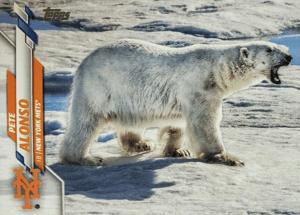 Topps PETE ALONSO POLAR BEAR VARIATION