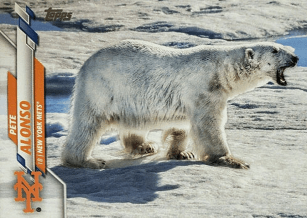 Pete Alonso topps polar bear card