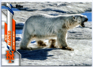 pete alonso polar bear card